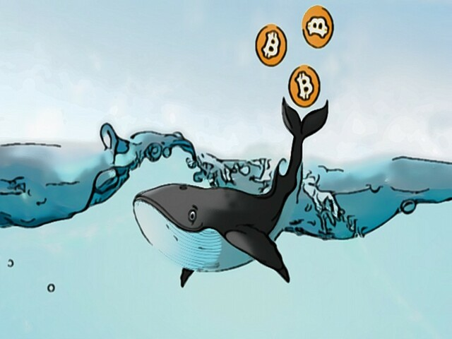 Diar about cryptocurrency whales